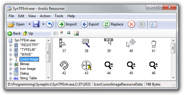 Anolis Resourcer: SynTPEnh.exe (Replaced)